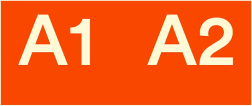 Escuela de idiomas Barcelona, nivel A1 y A2